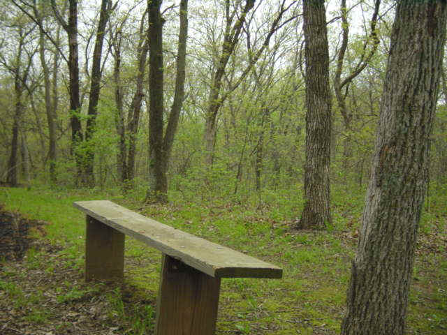 A bench on the hiking trail at Green Wildlife Area