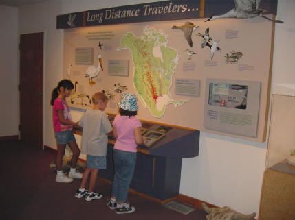 Interactive displays promote learning.